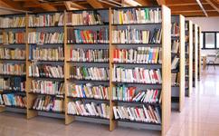 biblioteca%20maddaloni.jpg