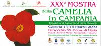 camelia in campania invito.jpg